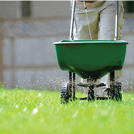 <p></noscript>With both synthetic and organic options available, along with pest control, lawn mowing, and more we can tailor a maintenance plan to your landscape needs.</p>