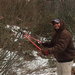 <p></noscript>From mulching and pruning to spring and fall clean-up, our technicians have the attention to detail to maintain your landscape.</p>
